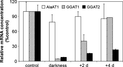 Light induction of transcription of the genes encoding AlaAT homologues. Quantitive Real Time PCR was performed on cDNA synthesized on the basis of total RNA extracted from shoots of etiolated seedlings and seedlings transferred for 2 or 4 days to light in comparison to control seedlings i.e. grown for 6 days in normal light conditions. Results are the mean of three replicates ± SD