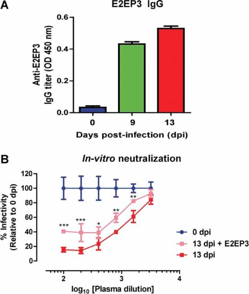 IgG from CHIKV-infected NHP plasma recognize E2EP3 and neutralize CHIKV infection in-vitroE2EP3 specific antibodies titers in plasma samples (0, 9 and 13 days pi) were determined by E2EP3 specific peptide-based ELISA at a dilution of 1:2000. Data are presented as mean ± SD.Anti-E2EP3 antibodies in CHIKV-infected NHP plasma were specifically blocked by soluble E2EP3 peptide, and followed by in vitro neutralization assay as described in Materials and Methods. Results are expressed as percentage infection relative to 0 dpi. Data are presented as mean ± SD. A set of serial dilutions from 1:100 to 1:3200 was made and samples assayed were performed in triplicates. *p < 0.05; **p < 0.01; ***p < 0.001 by two-way ANOVA with Bonferroni's multiple comparisons test.
