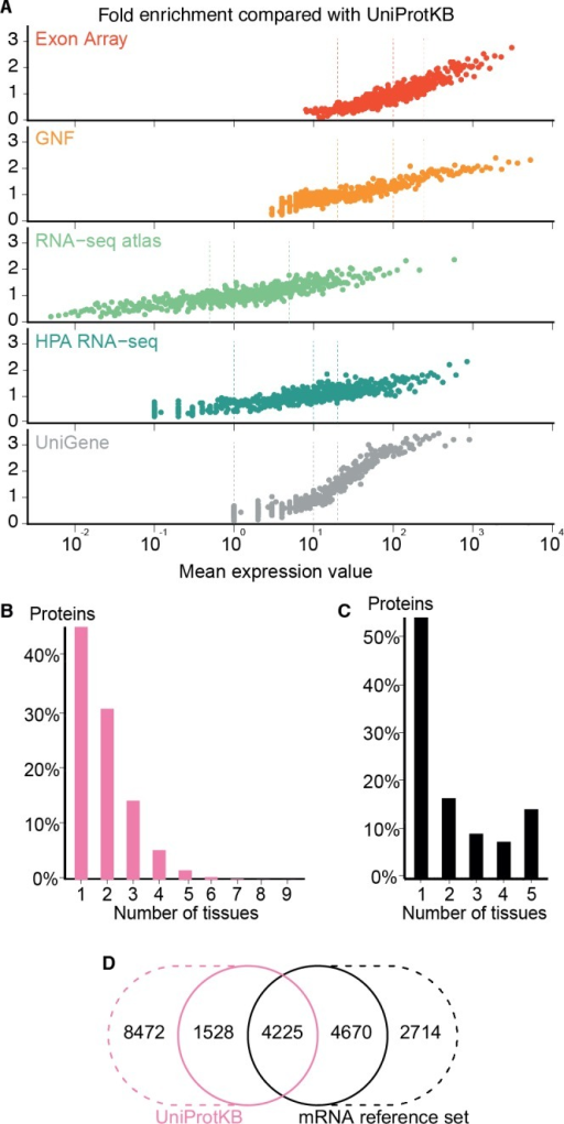 Quality of the transcriptome datasets.(A) To assess the correlation between expression level and confidence, we compared the transcriptome datasets to a gold standard, namely UniProtKB. We quantified the quality of the datasets in terms of its fold enrichment for correct gene–tissue associations compared to random chance. The comparison shows that higher expression values imply higher quality and that the three confidence cutoffs (vertical dotted lines) used correspond to equivalent quality in all datasets. (B) The distribution of expression breadth for UniProtKB is strongly skewed towards tissue-specific proteins, contrary to what was seen for transcriptome datasets. (C) We thus constructed a consensus mRNA reference set; its expression breadth distribution is in line with that of the individual mRNA datasets. (D) The mRNA reference set is highly complementary to the UniProtKB gold standard, providing 7,384 gene–tissue association that are not in the latter.