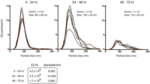 Particle tracking analysis reveals prolific larval Brugia exosome-like vesicle release rate.Profile of ELVs isolated from culture media incubated with 300 L3 parasites for successive 24 hr incubations. The size distribution of L3-derived ELVs from Day 1 (left), Day 2 (center) and Day 3 (right) incubations are shown (mean ± SD). Calculated vesicle release rates are provided in tabular format. ELV rate of release and size specificity decay in a time-dependent manner in vitro. * re-scaled based on dilution for comparison to 0–24 hour (1:20) dilution.