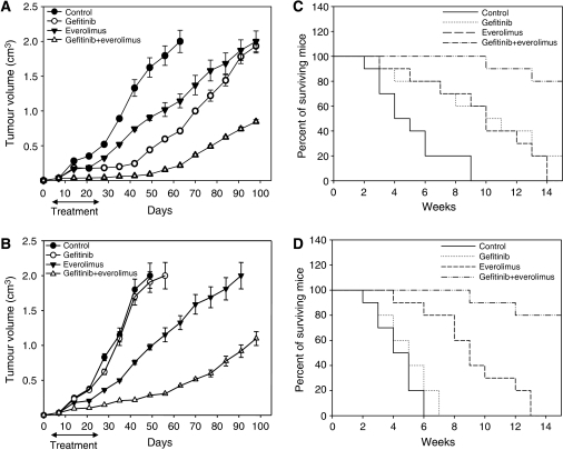(A and B) After 7 days following tumour injection, 10 mice were treated. Tumour sizes among different treatment groups at day 56 following GEO or GEO-GR cell injection resulted statistically significant for everolimus plus gefitinib vs control, vs everolimus alone and vs gefitinib alone (two-sided P<0.0001). Bars, s.d. (C and D) Mice survival resulted statistically significant for everolimus plus gefitinib vs control, vs everolimus alone and vs gefitinib alone (two-sided P<0.0001).