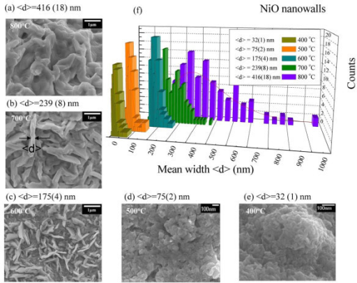 SEM images of the NiO nanowalls. (a-e) SEM images of the NiO nanowalls with various mean widths <d > which were synthesized at various annealing temperatures. (f) Distributions of mean nanowall width obtained from a portion of the SEM image of NiO nanowalls. The solid lines represent the fitting curves assuming the log-normal function.