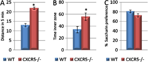 CXCR5-/- is associated with increased baseline locomotor activity and decreased anxiety-like behaviour but not anhedonia-like behaviour. (A) CXCR5-/- is associated with increased locomotor activity over 5 min in the open field test as compared to WT controls (* P <0.0001; n = 11 per group). (B) CXCR5-/- is associated with increased time spent in the inner zone of the open field test as compared to WT controls (* P = 0.015; n = 11 per group). (C) No difference in saccharin preference between CXCR5-/- and WT animals (P = 0.098; n = 11 per group).