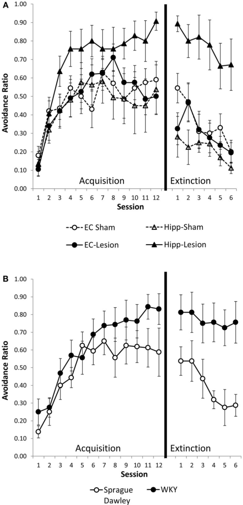 Avoidance acquisition and extinction following hippocampal and entorhinal cortex lesion and in WKY rats. Hippocampal and entorhinal cortex lesions did not alter avoidance acquisition (A). Rats with hippocampal lesions were impaired in extinction learning compared to sham controls (A). Acquisition of avoidance in WKY rats did not differ from SD rats (B). WKY rats exhibited a trend toward impaired extinction of avoidant responding (B). Although all six groups were statistically analyzed together, lesion (A) and unoperated (B) groups are displayed separately for clarity.