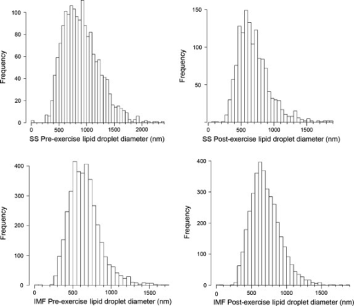 Histograms of lipid droplet size distribution. Lipid droplet numbers are displayed in 50‐nm bins, for SS preexercise, SS postexercise, IMF preexercise, and IMF postexercise diameters.
