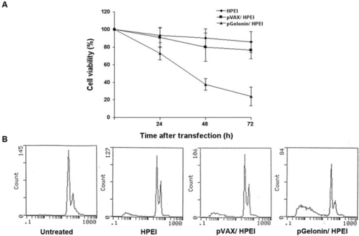 Antitumor efficacy of pGFP/HPEI complexes on SKOV3 cells. (A) Inhibition of cell viability by pGFP/HPEI complexes. Cell viability was determined by MTT assay before and 24, 48 and 72 h after transfection, respectively. Cell viability was significantly reduced in pGFP/HPEI group compared to medium alone, HPEI or pVAX/HPEI group. (B) Cellular apoptosis identified by flow cytometric analysis using propidium iodide staining method.