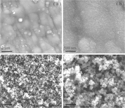 FE-SEM images of(a,b) MnO2 NSs and (c,d) Fe2O3 NPs electrodes.
