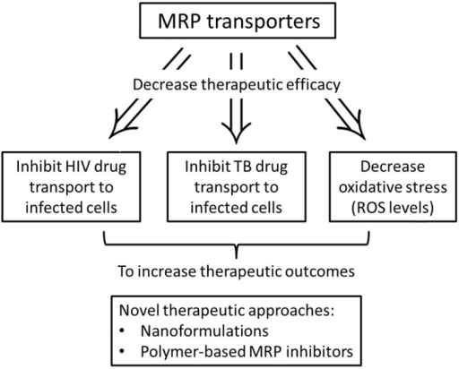 Schematic representation of the role of MRP efflux transporters in HIV-1 and TB therapy.