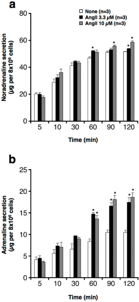 "Effect of AngII on secretion of noradrenaline and adrenaline from cultured bovine adrenal chromaffin cells.Cells were incubated with (3.3 or 10 μM) or without (None) indicated concentrations of AngII for up to 120 min at 37°C. Subsequently, both noradrenaline (a) and adrenaline (b) secreted spontaneously in the incubation medium were measured by HPLC. Data represent the mean ± s.e.m. *P < 0.05, when compared to the ""None"" group with an unpaired Student's t-test."