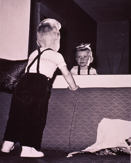 <p>A child with a toy hat on his head is looking at himself in a mirror.</p>