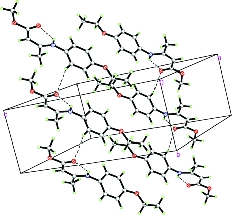 A view of the molecular packing in the title compound. Hydrogen bonds are shown as dashed lines.