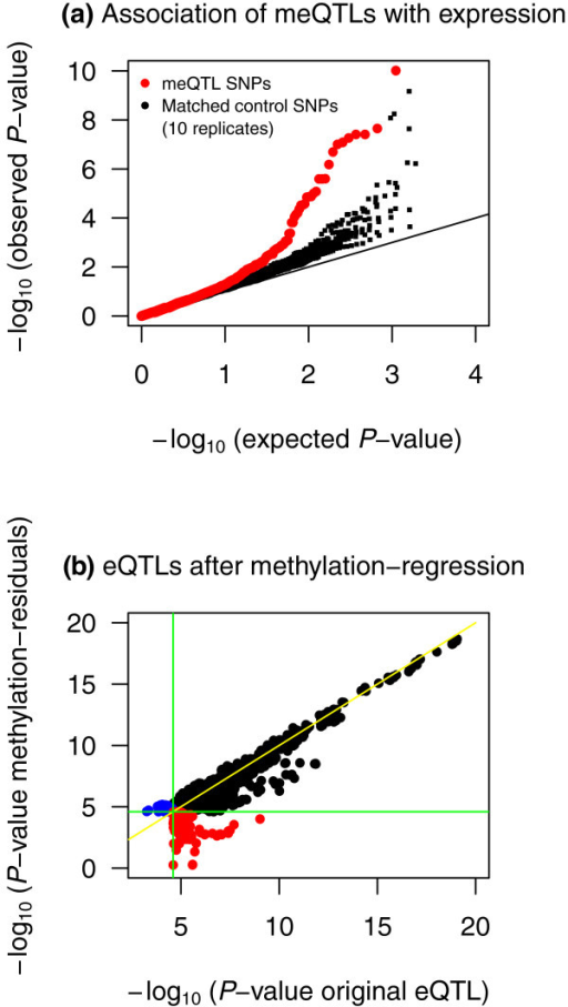 The overlap between meQTLs and eQTLs. (a) QQ-plot describing the eQTL association P-values in 180 cis-meQTL SNPs (red) and in eight samples of SNPs that match the cis-meQTL SNPs for minor allele frequency and distance-to-probe distributions (black). (b) Association signals in 508 FDR 10% eQTLs before and after regressing out gene-specific methylation. In black are 439 eQTLs that overlap across the two phenotypes, in red are 45 eQTLs present before methylation regressions, and in blue are 24 eQTLs present after regressing out methylation. The flat lines (green) correspond to the FDR 10% eQTL threshold.