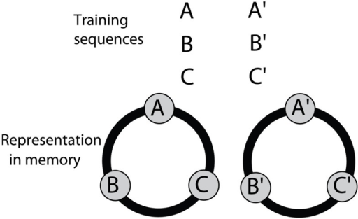 A model for associative grouping, derived from the results of the symbolic-delayed-match-to-sample experiments. Details in text.