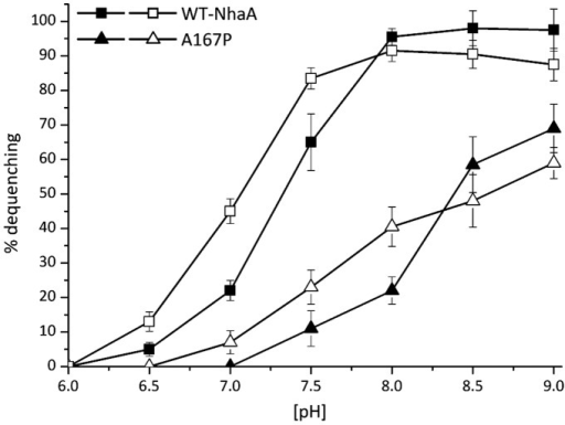 pH dependence of the Na+, Li+/H+ antiporter activity in everted membrane vesicles of variant A167P.Everted membrane vesicles were prepared from EP432 cells grown in LBK (pH 7) and expressing WT (□) or A167P (Δ). The Na+/H+ and Li+/H+ antiporter activity was determined in the presence of 10 mM NaCl (filled symbols) or 10 mM LiCl (open symbols) at the indicated pH values, using acridine orange fluorescence to monitor ΔpH. Results are expressed in % of maximal dequenching of the fluorescence due to cation addition. All experiments were repeated at least three times with nearly identical results.
