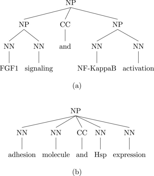 "Two parse trees of coordinations. (a) Parsing tree of the fragment ""FGF1 signaling and NF-KappaB activation"". (b) Parsing tree of the fragment ""adhesion molecule and Hsp expression""."