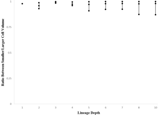 Maximum, mean, and minimum values (black dots from top to bottom) for smaller cell volume to larger cell volume ratios for C. elegans summarized by lineage depth (values per division event).
