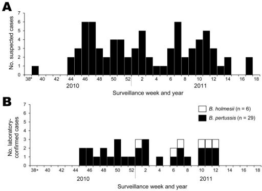 Epidemic curve of a pertussis outbreak, September 2010–April 2011, Japan. A) Suspected cases of pertussis. B) Laboratory-confirmed cases of Bordetella pertussis and B. holmesii infection. *As of September 20–26, 2010.