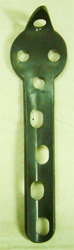 The anterior view of the central tension plate with sharp hook.