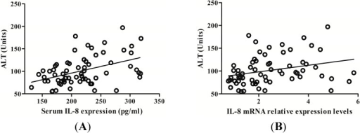 The correlation between ALT levels and IL-8 expression. (A) Serum IL-8 protein was positively correlated with serum alanine aminotransferase (ALT); (B) PBMCs IL-8 mRNA was also positively correlated with serum ALT levels.