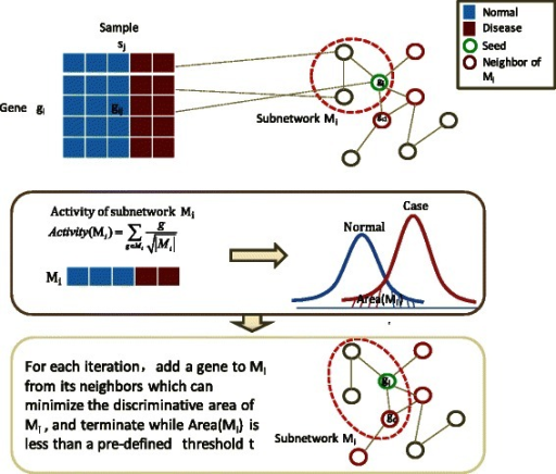 Computational strategy for generating discriminative modules. Computational strategy for generating discriminative modules by maximizing discriminative area of module activity. The discriminative area is defined as the area under two probability density functions of module activities corresponding to normal samples and case (disease) samples.