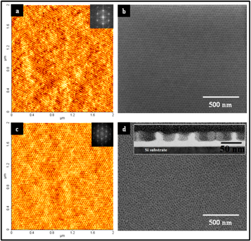 AFM (a,c) and SEM images (b,d) of BCP template films.ALW data shown in (a,b) whilst BHW data in (c,d). Insets of (a,c) show the FFT patterns of the corresponding images. (b,d) templates of ALW and BLW respectively after ethanol treatment. Inset of (d) cross-sectional TEM image of BLW after ethanol treatment.