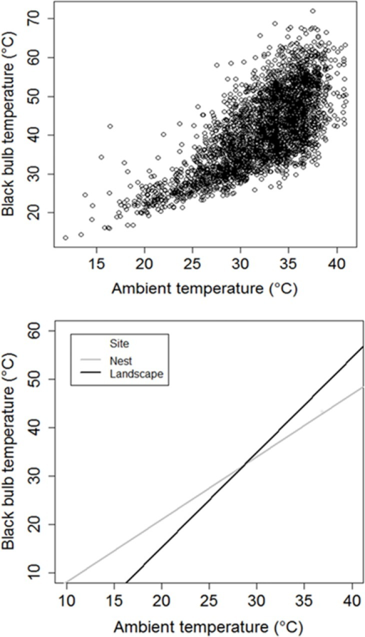 Within a thermally heterogeneous landscape, nest sites moderate thermal environments, especially during high heat.(A) Distribution of diurnal black bulb temperature (Tbb) observed from 09:00–19:00 h (n = 3,212) and (B) linear models of Tbb as a function of ambient temperature (Tair) recorded during the full sampling period (00:00–24:00 h) (B) at northern bobwhite nest and landscape sites at the Packsaddle WMA, Oklahoma, USA (2013–2014) (n = 7,008).