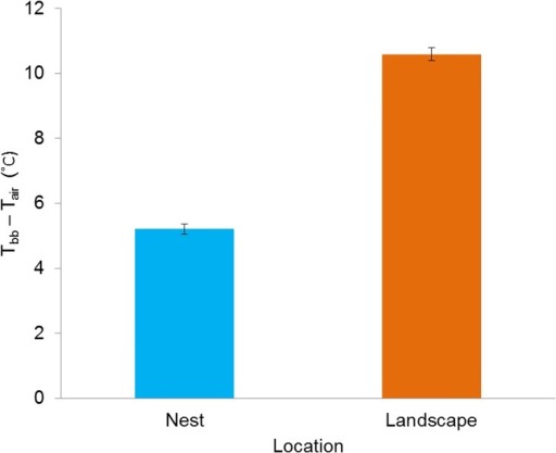 Nest sites substantially decouple thermal environments from the landscape through reduced amplification of heat loads.Differences (Tbb−Tair) between diurnal black bulb temperature (Tbb) and ambient temperature (Tair) (±SE) measured from 09:00–19:00 h at northern bobwhite nest (n = 87) and landscape sites (n = 205) at the Packsaddle WMA, Oklahoma, USA (2013–2014).