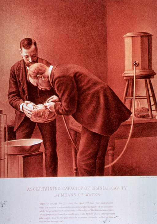 <p>Black and white print of 2 men; one is holding a skull and the other is pouring water into it. This is &quot;photograph no. 2&quot; that appears in &quot;On composite photography as applied to craniology; on measuring the cubic capacity of skulls, memoirs of the National Academy of Sciences; volume 3, 13th memoir&quot; by J.S. Billings and Washington Matthews.</p>