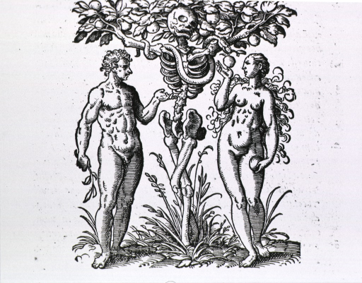 <p>Two human figures with a skeleton as a fruit tree between them; a serpent wrapped around the limbs offers a piece of fruit to the woman.</p>