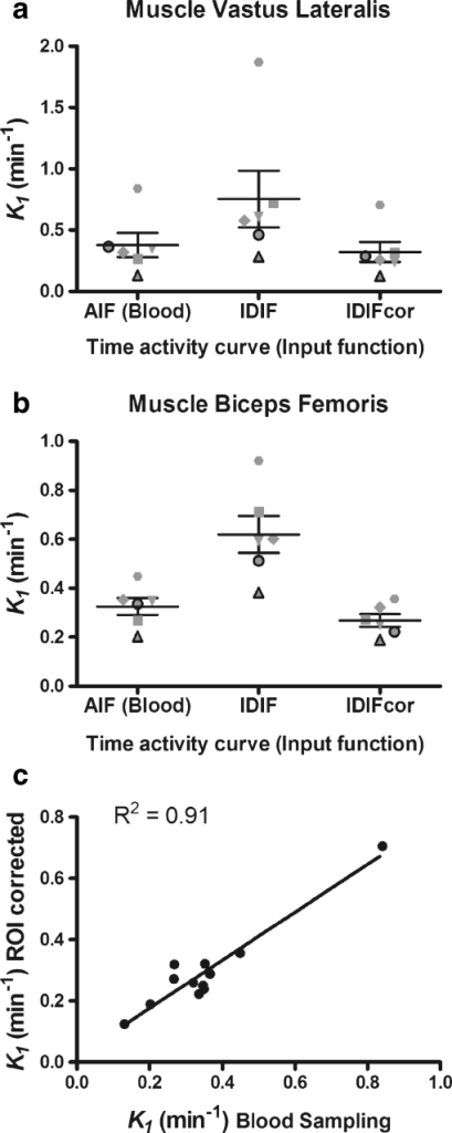 a, b11C-acetate perfusion index, K1, for the vastus lateralis (a) and biceps femoris (b) obtained by kinetic analysis with a three-compartment model. For each muscle, the average and range of K1 values were obtained from an AIF derived by blood sampling (Blood), IDIF and corrected for PVE (IDIFcor). c The K1 values obtained from blood sampling are also correlated with the corrected IDIF values. The data from each subject are identified by the same symbol across all conditions