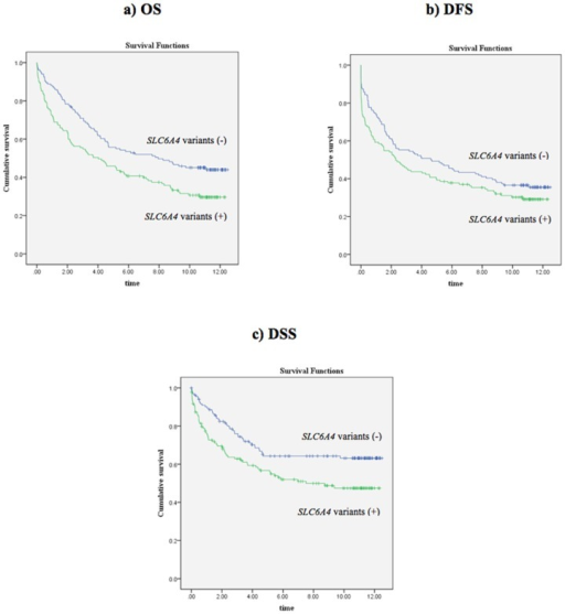 Kaplan-Meier survival curves for the combined genotypes of three SLC6A4 polymorphisms.a) OS (p = 0.005, log-rank test), b) DFS (p = 0.104, log-rank test), and c) DSS (p = 0.008, log-rank test). Time is shown in years.