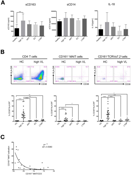 Frequencies of activated CD161+ and CD161– TCR Vα7.2+ cells are elevated in the blood of highly viremic HIV patients.A) Plasma levels of sCD163, sCD14 and IL-18 were measured by ELISA in mostly corresponding samples of healthy controls (HC n = 13), highly viremic HIV-infected patients (high VL n = 18), patients receiving ART (ART n = 17), elite controllers (EC n = 6) and long-term nonprogressors (LTNP n = 6). B) Activated cells were defined as CD38+ and HLA-DR+ double positive cells and their frequency was assessed within the CD4–, MAIT and CD161–TCRVα7.2+ populations. PBMC samples were derived from healthy controls (HC), highly viremic HIV-infected patients (high VL), patients receiving ART (ART), elite controllers (EC) and long-term nonprogressors (LTNP). Groups were compared by Kruskal-Wallis test followed by Dunn's multiple comparison test. P-values smaller than 0.05 were considered significant, where *, ** and *** indicate p-values between 0.01 to 0.05, 0.001 to 0.01 and 0.0001 to 0.001 respectively. Bars and lines indicate mean and standard deviation. C) Pearson correlation analysis of CD161+ MAIT cell activation and CD161+ MAIT cell frequency of CD3+ T cells from the untreated high VL patient group. R2 quantifies goodness of fit to the non-linear regression (exponential grow equation). R2 is a fraction between 0.0 and 1.0, with 1.0 indicating the best fit.