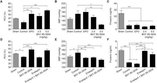 Effect of BAY 85-3934, erythropoietin (EPO), and enalapril in the rat subtotal nephrectomy model.Data are presented as means ± SEM. (A) Packed cell volume (PCV), (B) systolic blood pressure (SBP), and (C) prorenin following oral administration of BAY 85-3934 (2.5 mg/kg or 5 mg/kg once daily) or rhEPO (100 IU/kg s.c. twice weekly) for 5 weeks, compared with control and sham-operated animals (n = 4–6 animals per group). Efficacy of BAY 85-3934 sodium (80 ppm), enalapril (30 ppm), and a combination of both, administered in drinking water for 5 weeks, on (D) PCV, (E) SBP (at 4 weeks), and (F) prorenin (n = 9–10 animals per group). *p<0.05, **p<0.01, ***p<0.001; one-way ANOVA followed by Dunnett's multiple comparison test to corresponding sham or control group for (A), (C), (D), and (E), and Bonferroni's multiple comparison test to corresponding sham or control group for (B) and (F).