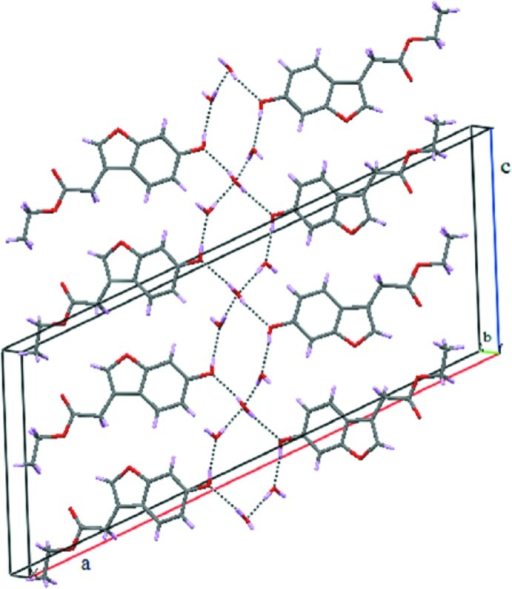 Hydrogen-bonding inter­actions (dashed lines) featuring a fused (12) ring motif.