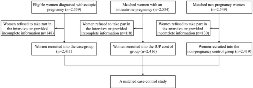 Recruitment profile of this study.