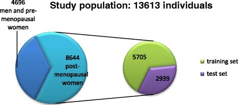 The study population and how it got divided for analysis.