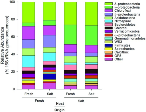 Average relative abundance (% of 16S rRNA gene sequences) of dominant phylogenetic groups (>3.3% of total sequences) in soils originating from and hosted in freshwater (Fresh) and saltwater (Salt) wetlands (n = 5 per treatment).