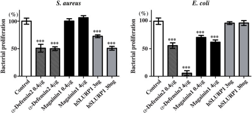 SLURP1 exhibits an antibacterial activity against S. aureus.Mid-exponential growth phase S. aureus amd E. coli were incubated for 18 h with α-defensin2, magainin1 or rhSLURP1 purified from culture supernatants. After the incubation, bacterial proliferation was assessed based on the change in the OD620. The results are presented as percentages of growth relative to the untreated control. This assay was repeated in six independent experiments performed in triplicates. ***p < 0.001 (one-way ANOVA).