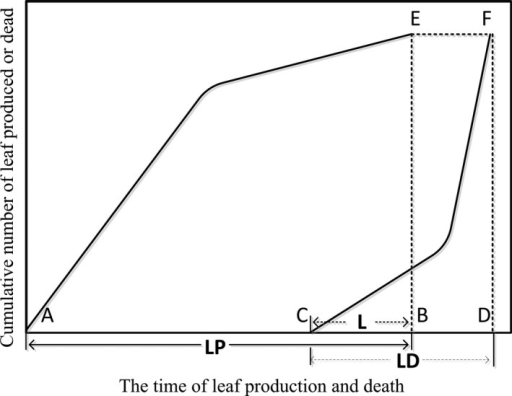 Conceptual model describing leaf dynamics through the growing season. Each letter represents a key phenological date as follows: A, first leaf production; B, last leaf production; C, first leaf death; D, last leaf death. E and F, theoretical total leaf number. Dotted lines represent the end of the period of leaf production [BE] and end of period of leaf death [DF]. Solid lines link the cumulative number of leaves produced [AE] or lost [CF] through time. LP is the period of leaf production (solid arrow), LD is the period of leaf death (dashed arrow) and L is the time lag between the end of leaf production and the start of leaf death (dashed and dotted arrow).
