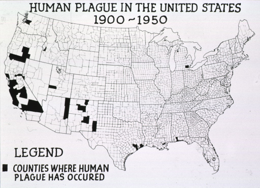 <p>Geographic representation of the counties where human plague occured in the United States between 1900-1950.</p>
