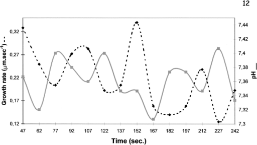 Correlation between pHc oscillations in the alkaline  band and growth rate on the same tube. At the low probe intracellular concentrations used, the time interval (25 s) shown represents the best possible compromise between fading and time-resolution. Although not allowing precise correlation, oscillatory  variations (i.e., with at least three full cycles) of pHc in the alkaline band were detected, with periods ranging from 25 to 55 s. In  most of these the correlation of pHc at the alkaline band and the  growth rate showed the trend depicted in this plot, i.e., when  growth goes up, the pH goes down (or, in other words, proton  concentration goes up). At this time resolution, however, a significant portion of the wave function is lost and precise correlation  is not possible.