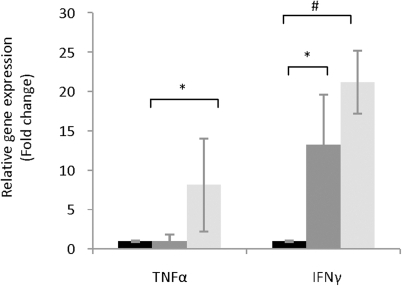 mRNA levels of the pro-inflammatory cytokine genes, IFNγ and TNFα linked to the oxidative stress response in the host.Relative expression was calculated as previously described relative to the value in the L. johnsonii feed group (expression  = 1). Relative expression in the L. johnsonii feed group (black bars), healthy control (dark grey bars), and diabetic animals (grey bars). The values are means +S.D. (N = 6); *P<0.05; #P<0.01.