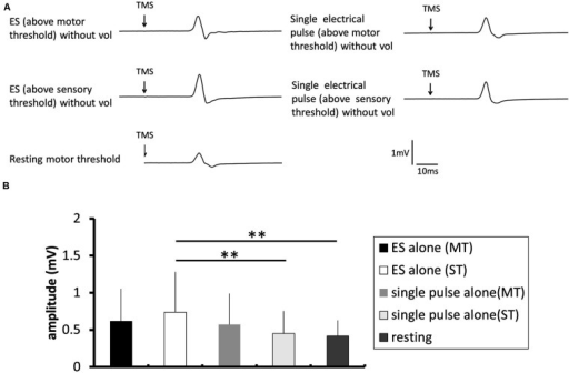 The effect of electrical stimulation without voluntary contraction on the excitability of the corticospinal tract. (A) Typical averaged motor-evoked potential (MEP) waveforms recorded in the FDI muscle. (B) The changes in the group mean MEP control ratio (n = 8) induced by the following experimental tasks: electrical stimulation (ES; above motor threshold, MT) without voluntary contraction (vol), ES (above sensory threshold, ST) without vol, single electrical pulse (MT) without vol, and single electrical pulse (ST) without vol, and a control trial using the resting motor threshold as the TMS intensity. The MEP amplitude was significantly higher after a train of electrical stimulation above sensory threshold than after single pulse above sensory threshold (p = 0.018) and at rest (p = 0.006).