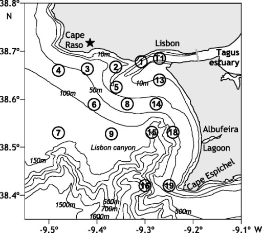"Location of the study site. Location of the sampling stations in the mouth of the Tagus estuary (SW Portugal) and adjacent coastal area. The position of the Guia meteorological station (38°41'27"" N, 9°27'34"" W) is marked with a star."