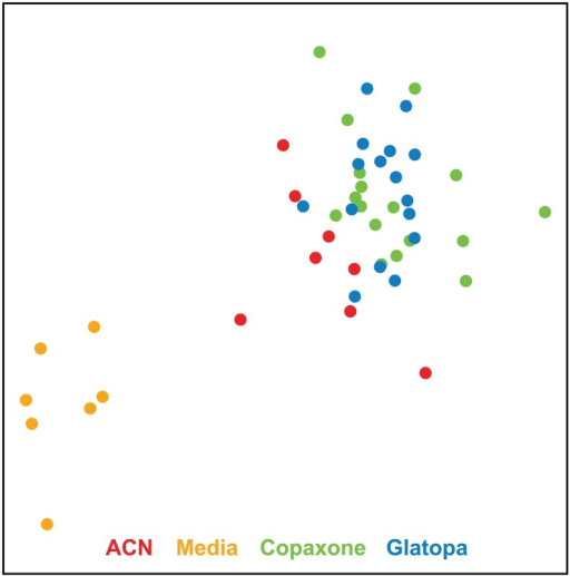 MDS plots based on the 4176 Copaxone-responsive probes.As expected, clear separation is obtained between Copaxone and media groups. There is also clear separation between media and copolymer groups (ACN, Copaxone, or Glatopa), some separation between GA (Copaxone or Glatopa) and ACN and no visible separation between Copaxone and Glatopa. ACN, acetonitrile nonconforming copolymer; GA, glatiramer acetate; MDS, multidimensional scaling.