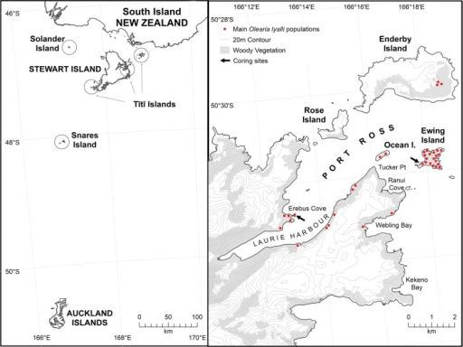 Map (left) showing the location of subantarctic Auckland Islands in relation to the South Island of New Zealand, and islands (circled) where O. lyallii currently occurs in New Zealand, and (right) the main O. lyallii populations on the north-eastern Auckland Islands (boxed area enlarged from map on left).