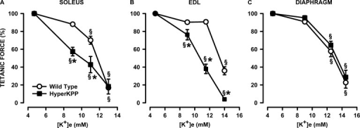 HyperKPP soleus and EDL but not diaphragm were more sensitive to the K+-induced force depression. (A–C) Each muscle was tested at only one elevated [K+]e. Tetanic force is expressed as a percentage of the force at 4.7 mM K+. Error bars represent the SEM of five muscles. §, mean tetanic force was significantly different from the mean force at 4.7 mM K+; *, mean tetanic force of HyperKPP muscle was significantly different from the mean force of wild-type muscle; ANOVA and LSD; P < 0.05.