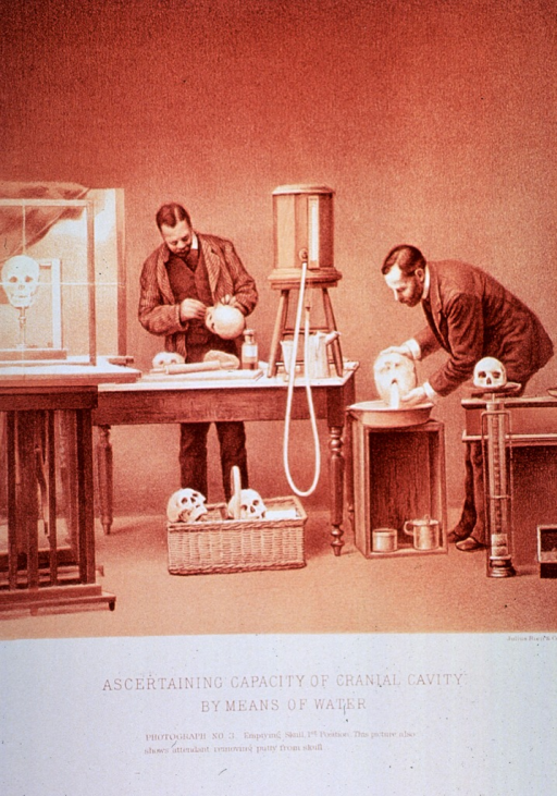 <p>Black and white print of 2 men; one is emptying water from a skull and the other is removing putty from another skull. This is &quot;photograph no. 3&quot; that appears in &quot;On composite photography as applied to craniology; on measuring the cubic capacity of skulls, memoirs of the National Academy of Sciences; volume 3, 13th memoir&quot; by J.S. Billings and Washington Matthews.</p>