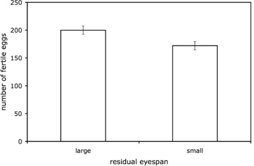 The effect of male eyespan on fertility. Least squares means ± s.e. number of fertile eggs laid in 32-day period following mating (at average levels of fecundity) by large residual eyespan and small residual eyespan males.
