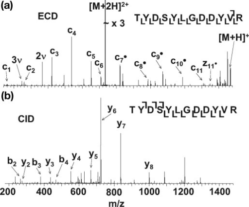 ECD (a) and CID (b) mass spectra of doubly protonated ions of tryptic peptide [671–682] TYDSYLGDDYVR from apo-transferrin (υ denotes harmonic).